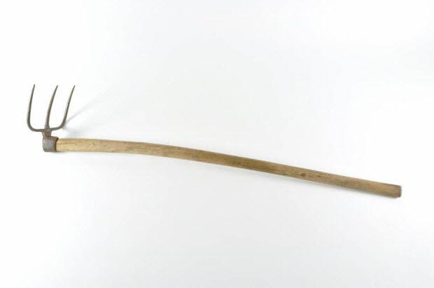 croc - Fossou