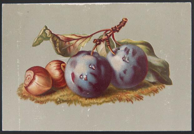 carte réclame - Prunes et noisettes