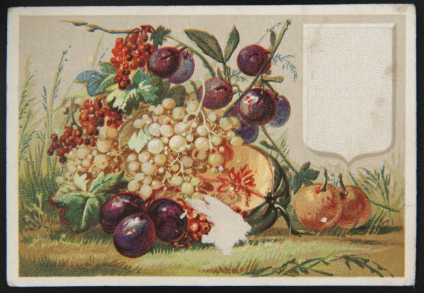 carte réclame - Groseille, prunes, abricots, melon et raisin