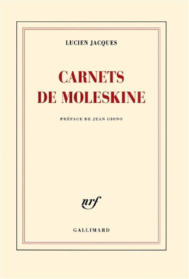 Livre - Carnets de moleskine
