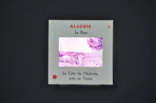 diapositive - Algérie, la côte de l'Algérois, près de Tipasa