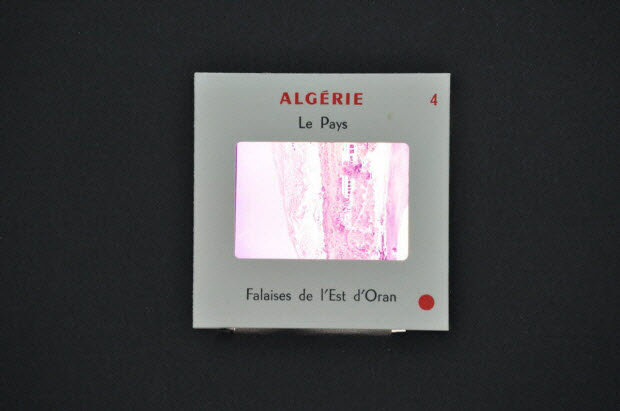 diapositive - Algérie. Falaises à l'est d'Oran