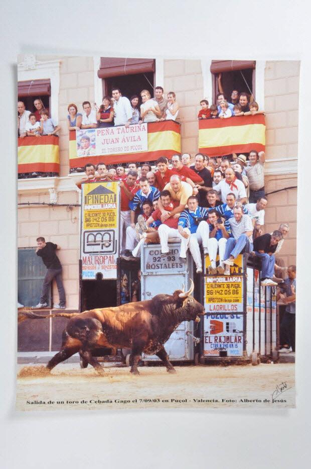 photographie - Salida de un toro de Cebada Gago