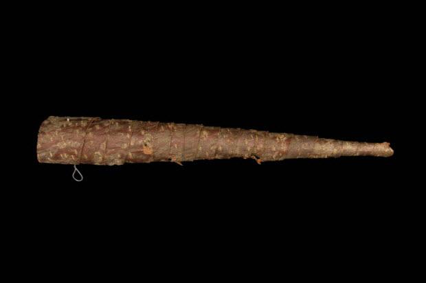 hautbois d'écorce