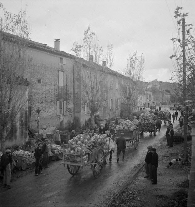 photographie - MNATP. Mission de Marcel Maget et André Varagnac en Provence (novembre 1938)