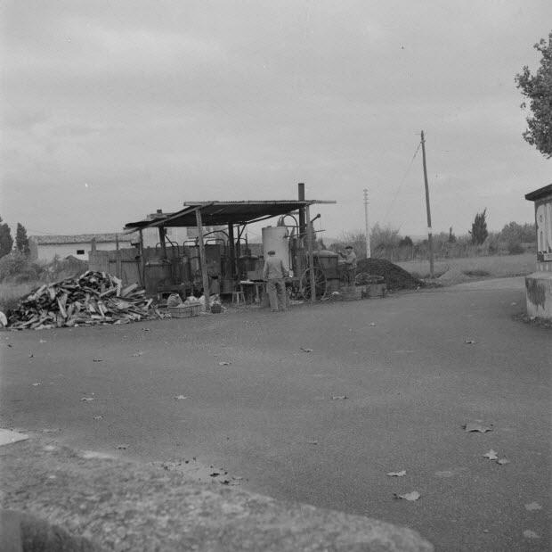 photographie - L'alambic de Monsieur Jean Caban, distillateur, au travail. Tas de bois