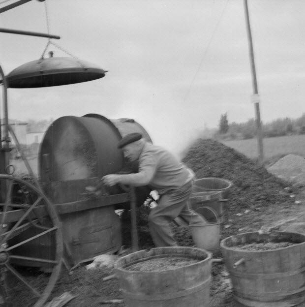 photographie - Monsieur Jean Caban, distillateur, vide le marc qui reste dans son alambic après la cuisson