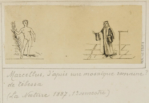 partie d'un ensemble de dessins - Marcellus, d'après une mosaique romaine ? de Tébessa