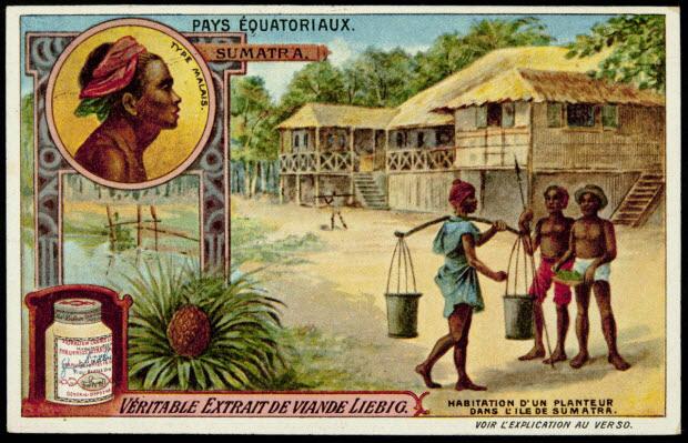 carte réclame - PAYS EQUATORIAUX. SUMATRA. HABITATION D'UN PLANTEUR DANS L'ILE DE SUMATRA.