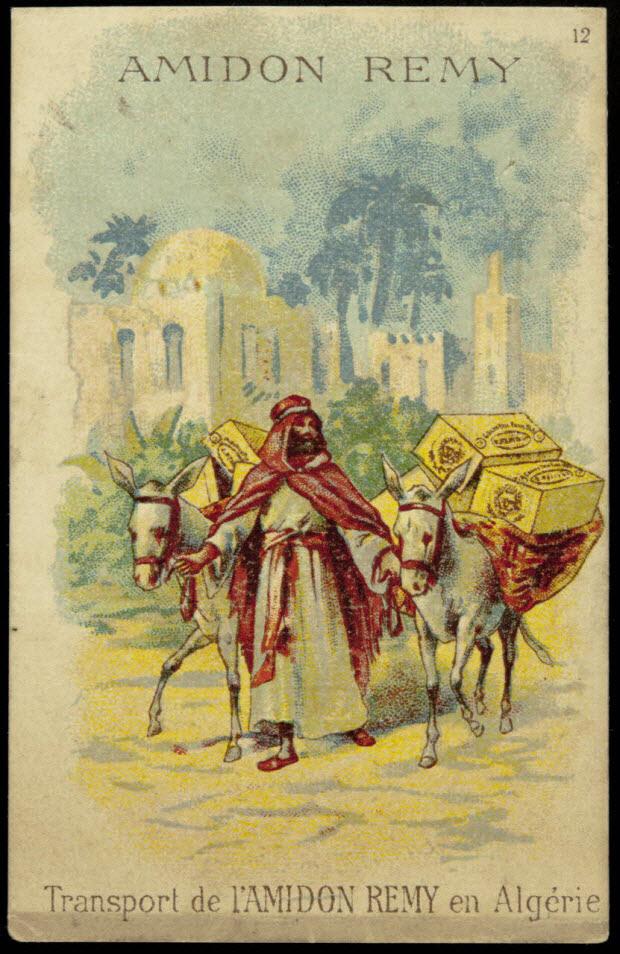 carte réclame - Transport de l'AMIDON REMY en Algérie