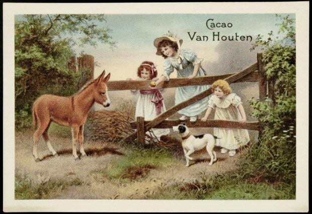 carte réclame - Des enfants s'amusent sur une barrière, devant un âne