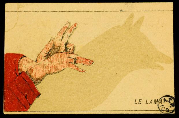 carte réclame - LE LAMA