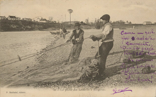 carte postale - LA PECHE DES SAUMONS A BERGERAC
