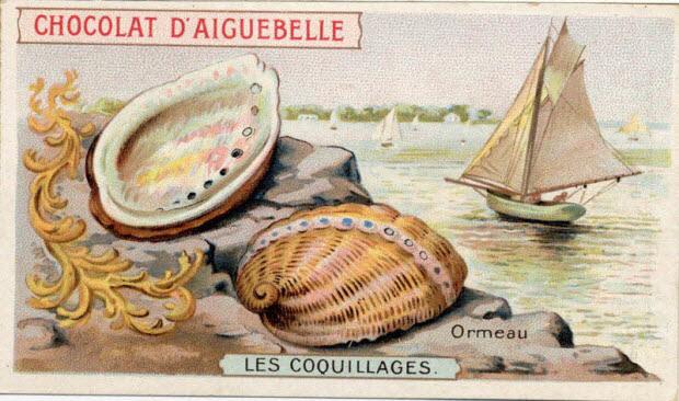 carte réclame - LES COQUILLAGES Ormeau