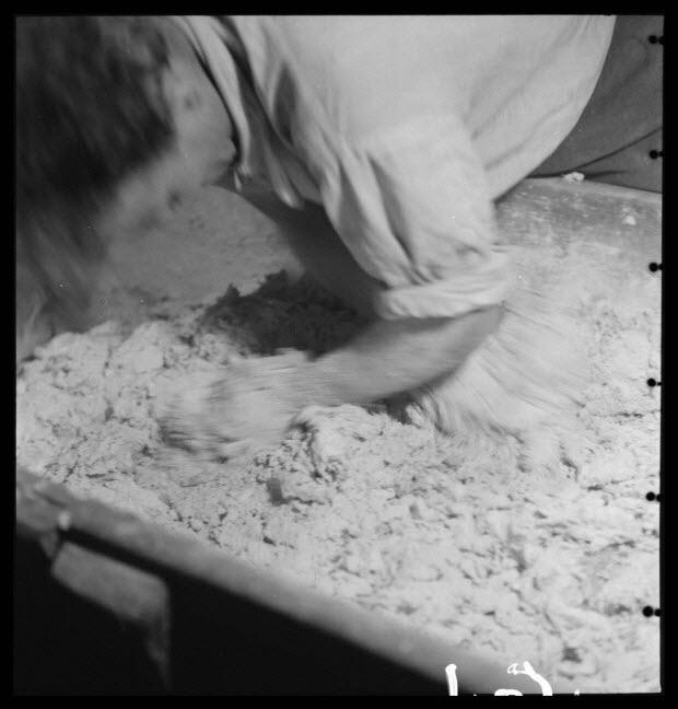 """photographie - Bourg. Salle des pétrins. Pétrissage : mouvement horizontal pour mêler les morceaux de pâte """"freza"""""""
