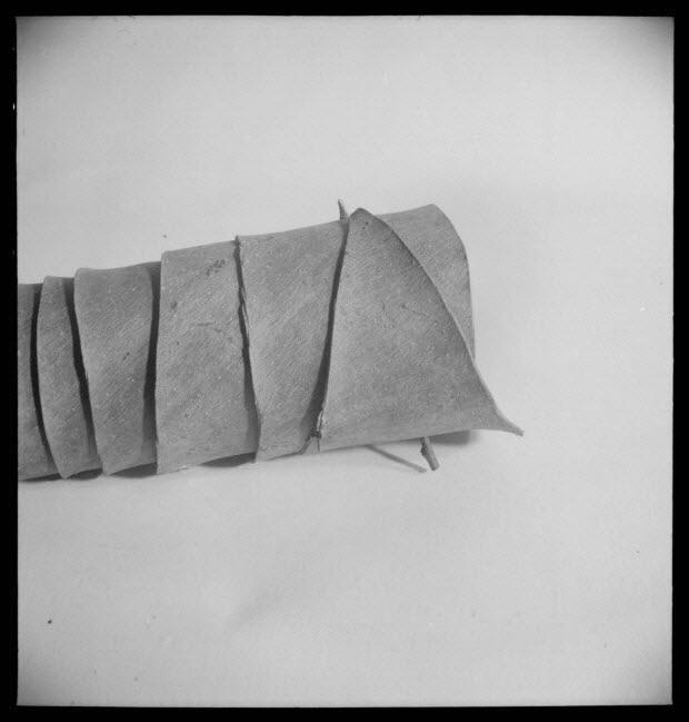 photographie - Aurillac : Muséum