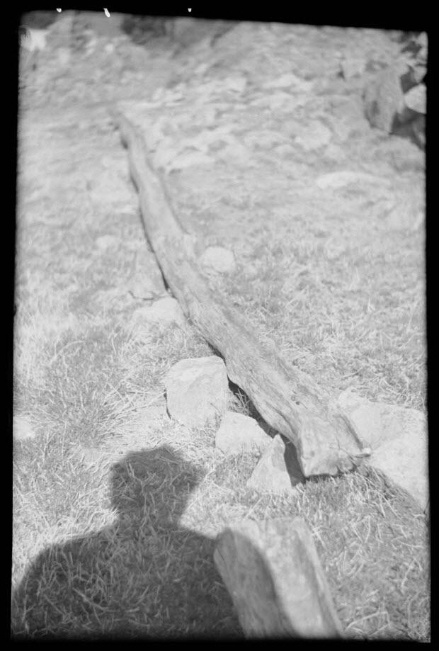 photographie - Bergerie la Coste, au-dessus du Nouzaret, chemin de montagne. Auge à sel pour moutons