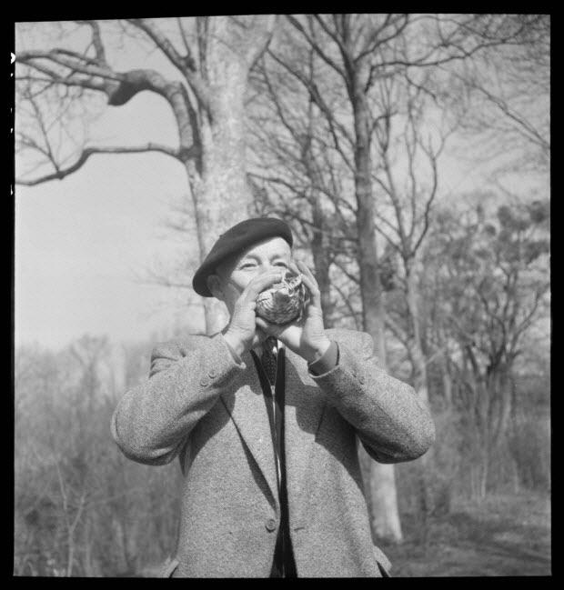photographie - Domaine de Wideville. Monsieur Ernest Rèbre jouant de la conque pour appeler le cerf. Objet MNATP, collection 1954.32.1