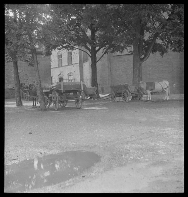 photographie - Rencontre franco-allemande d'art et traditions populaires (31 juillet - 6 août 1950)