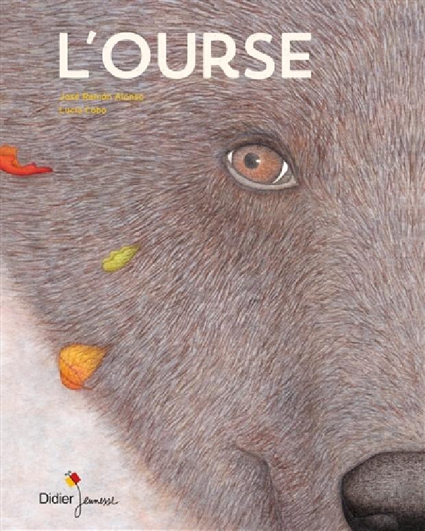 Livre - L'ourse