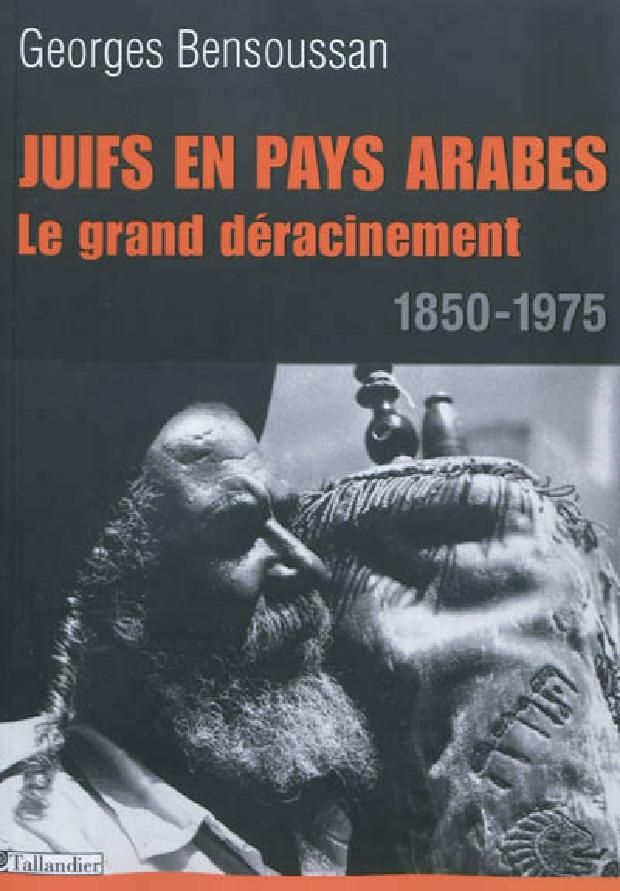 Livre - Juifs en pays arabes